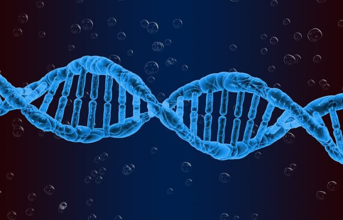 DNA Software Under Scruitiny